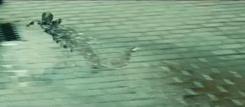 アクア 排水溝へ逃げる.jpg