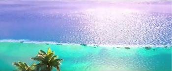 サンゴ礁と外海.jpg