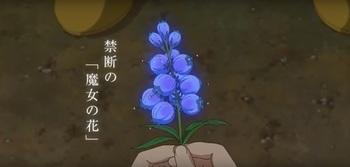 魔女の花.jpg